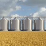 В Красноярске появится завод по переработке зерна за 15 миллиардов