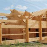 Мутко продлил госсубсидирование на деревянные домокомплекты