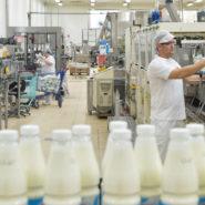 В Пензенской области построят крупный молочный комплекс за 4,5 млрд